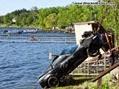 2009-chevrolet-corvette-8863