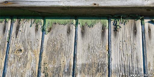 vinpinad vägg på busskur med rester av grön färg