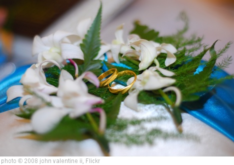 'wedding rings' photo (c) 2008, john valentine ii - license: http://creativecommons.org/licenses/by-sa/2.0/
