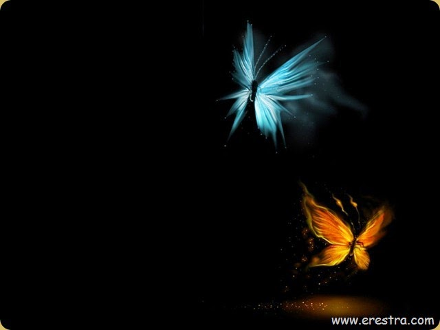 Love-is-like-a-butterfly