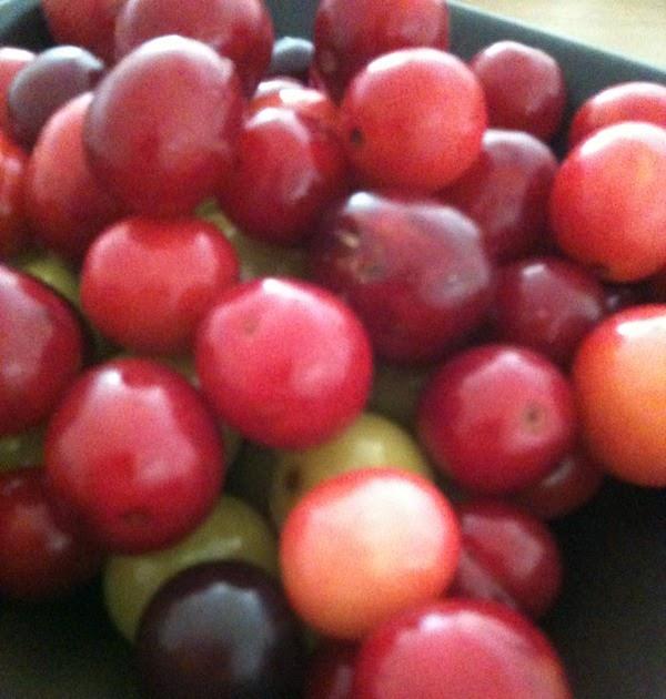 Sarah 39 s kitchen diary plum jam - Plum jam without sugar homemade taste and health ...