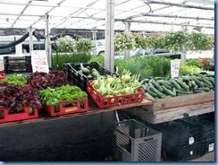 6295 Ottawa  Byward Market