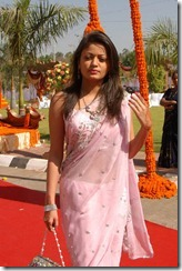 sneha ullal in saree www.143fun.blogspot.com