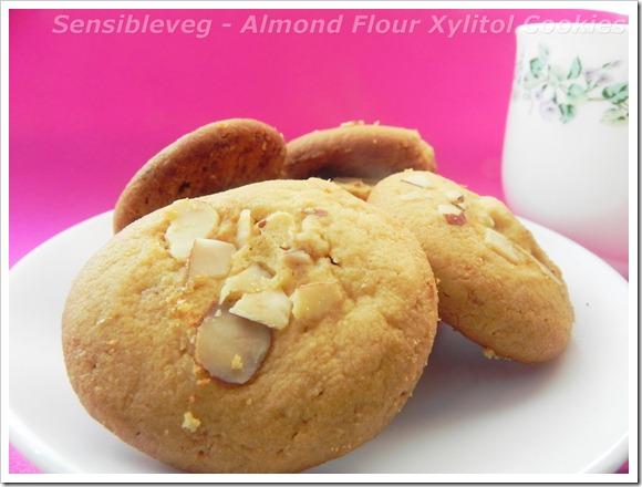 almondflourxylitolcookies2