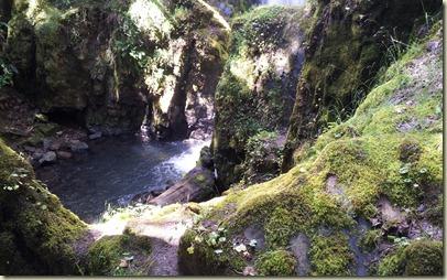 Falls Umpqua R trip (3)