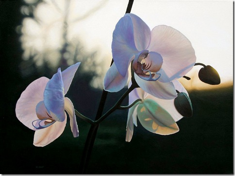 jason_de_graaf_Orchid_II_acrylic_on_canvas