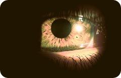 Fascinación por la vida