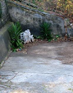 Garden Christmas 08