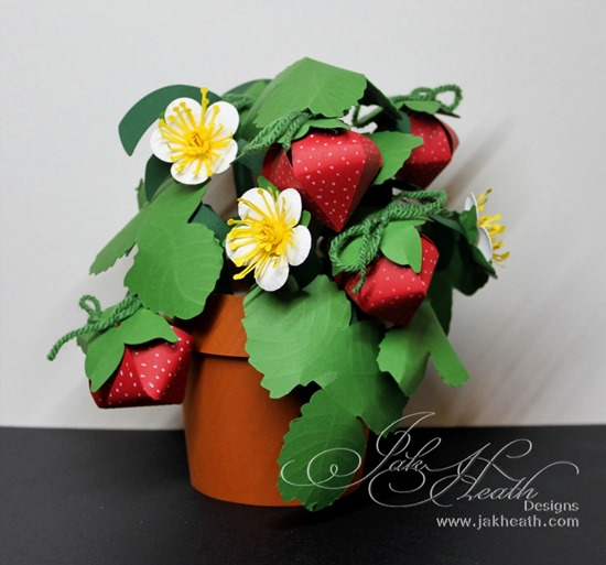 Strawberry pot2