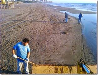 Continúan los trabajos de limpieza en las playas del partido de La Costa