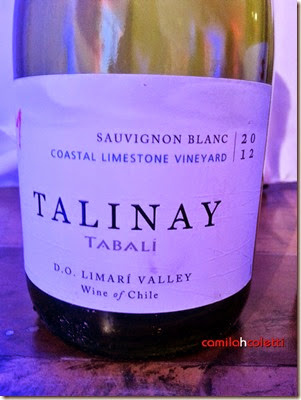 talinay-2012-vinho-e-delicias