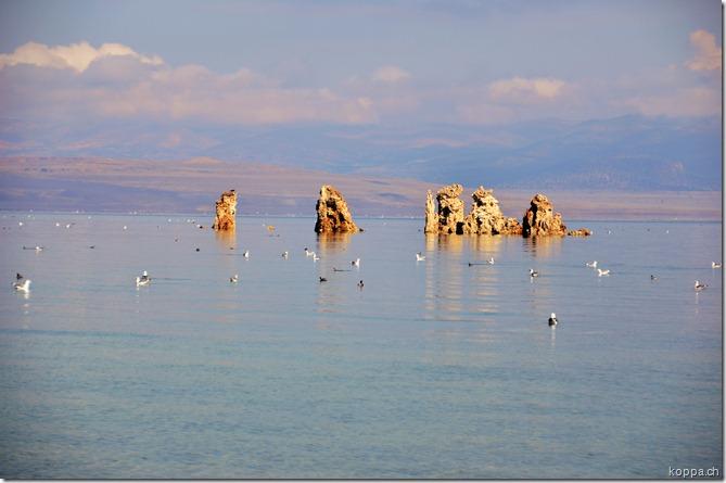 110912 Lake Mono (7)