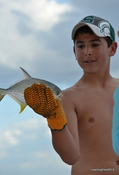 Pompano, but too small to keep