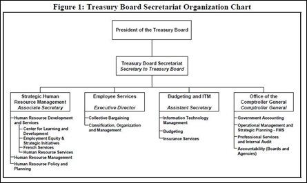 TB org chart 2001