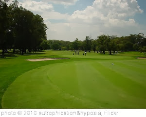 'Golf courses' photo (c) 2010, eutrophication&hypoxia - license: http://creativecommons.org/licenses/by/2.0/