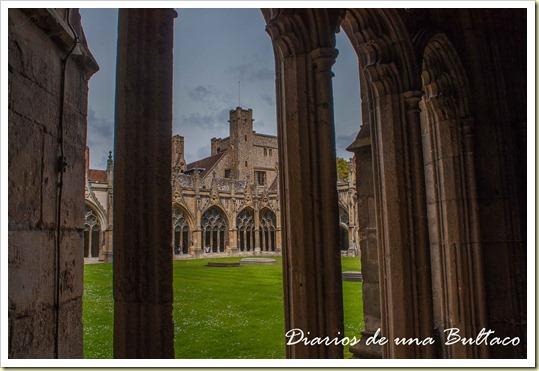 Canterbury-13