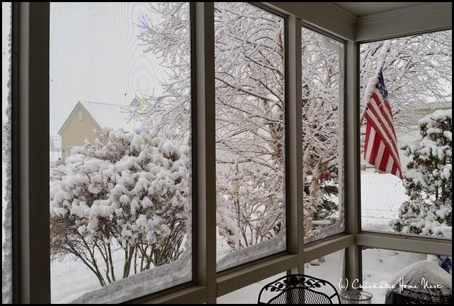 Snow, Winter Wonderland (12)