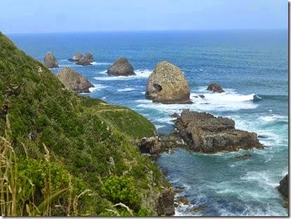 NZ JH 8 Feb 15 220