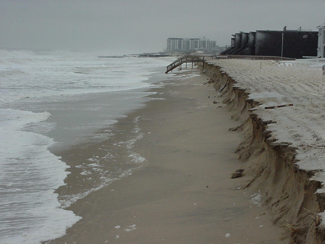 Dune damage in North Shores, near Rehoboth Beach, Delaware, caused by the storm of 25 January 2000. dnrec.state.de.us
