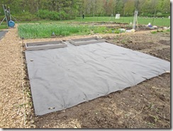 Plot with landscape fabric