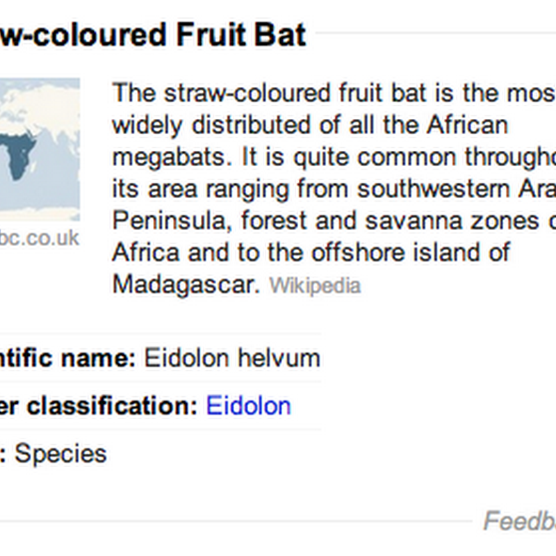 Google Knowledge Graph using data from BBC and Wikipedia