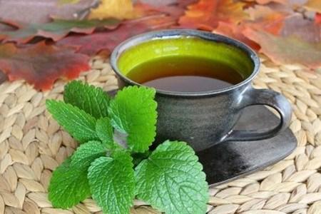 Các loại trà thanh mát tốt cho sức khỏe vào mùa hè