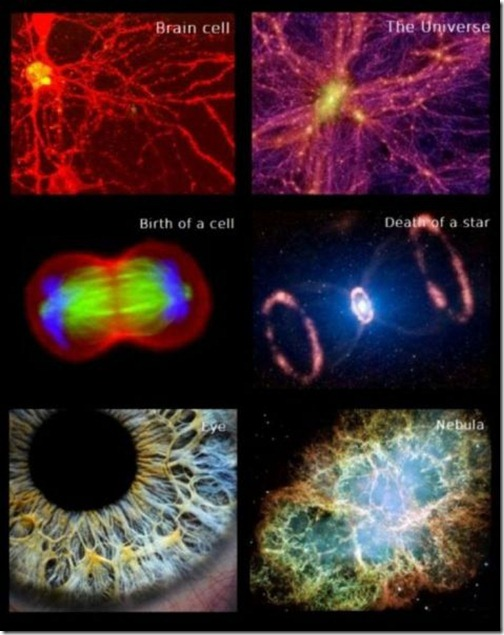great_images_that_go_together_with_astounding_facts_640_15