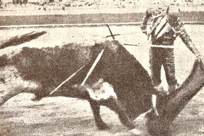 Rafel el Gallo natural 001