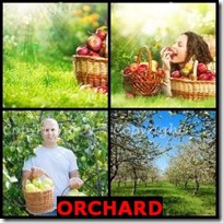 ORCHARD- 4 Pics 1 Word Answers 3 Letters