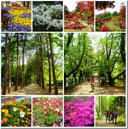 spring_seoulcollage