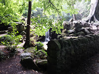 20120921_100320.jpg Photo