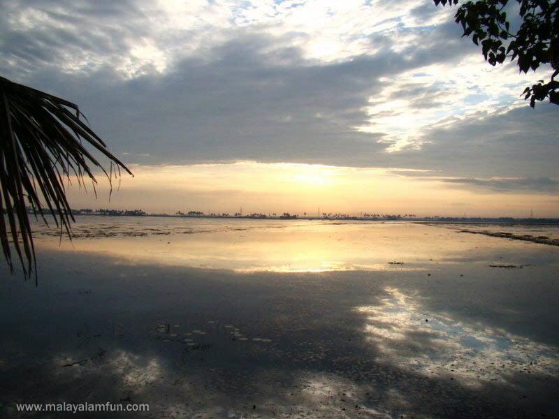 Oru Kuttanadan Yathra: The scenic view of Kerala(South India)