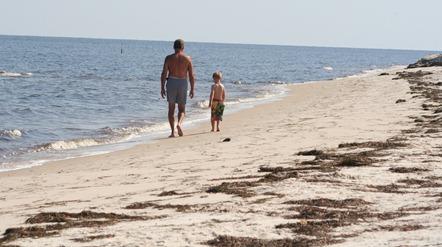 Beach 2012-10-11 003