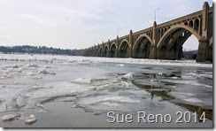 Ice on the Susquehanna River, 2/2014, by Sue Reno, Image 1