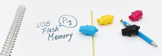Pig USB  flash drive 1