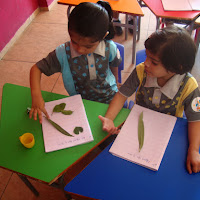 Pre-Primary on 19 November 2013 GDA Harni