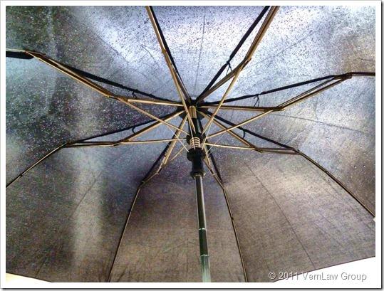 UmbrellaP1030321