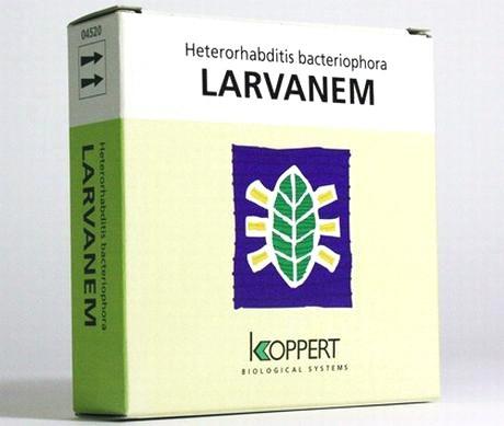 Larvanem 3