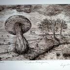 La plaine limbourgoise  sépia 20x 30cm  50 euros