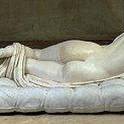 93 - Hermafrodita dormido