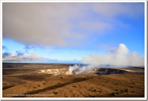 140724_HawaiiVolcanoesNP_0207