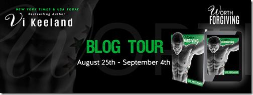 vi blog tour banner