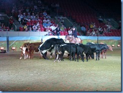 9682 Alberta Calgary Stampede 100th Anniversary - ENMAX Corral Show Tails