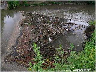 Nepořádek u vody 2.jpg