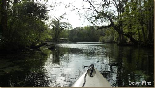 Chassahowitza River canoeing_240