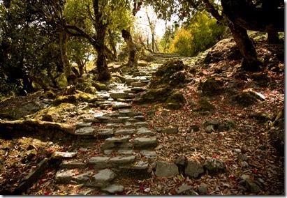 path_sm