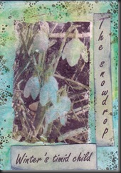 January ATC for TrishBees group