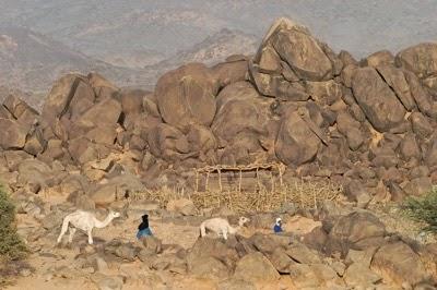 Matt Paulson Taureg Nomads in Niger jpeg