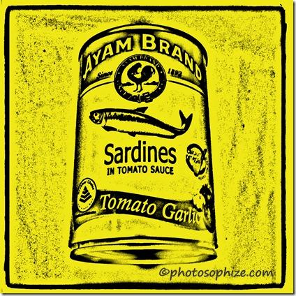 ayam brand sardines 4