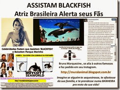 ASSISTAM BLACKFISH Marquezine_thumb[1]